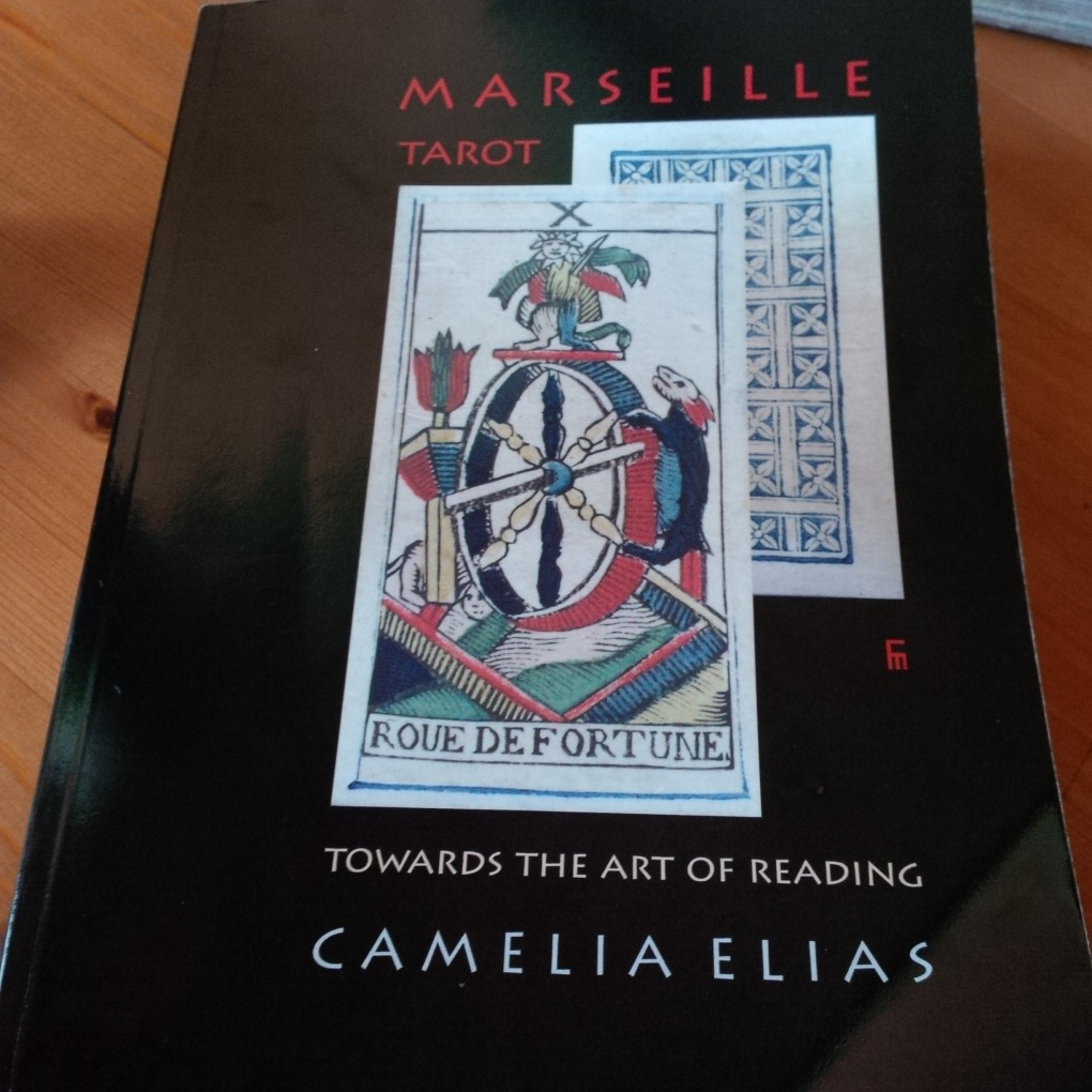 Towards the Art of Reading Camelia Elias