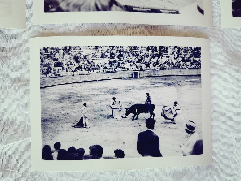 Vintage photograph of bullfight.