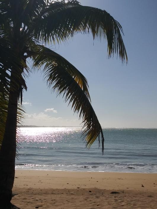 Loiza Pinones Puerto Rico Playa Mar Arena Sol